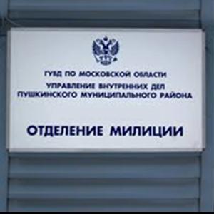 Отделения полиции Березовского