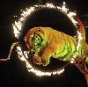 Цирки в Березовском